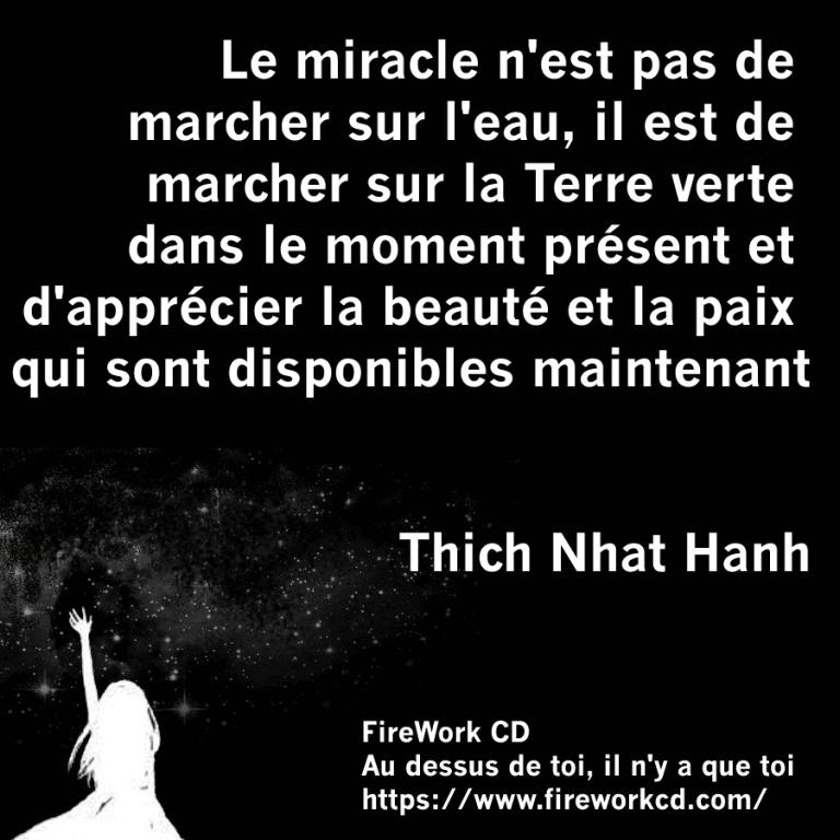 Thich Nhat Hanh - Beauté et Paix
