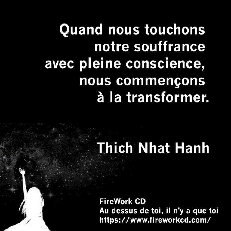 Thich Nhat Hanh - Pleine Conscience