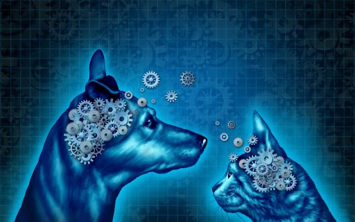 Parlez aux animaux – Livre Access Consciousness