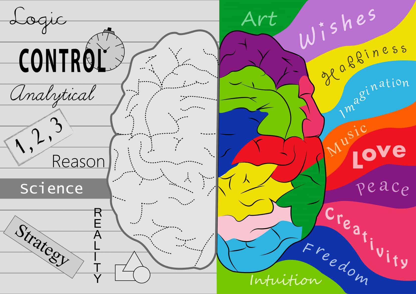 Cher client de cerveau gauche | L'énergie de la pensée positive
