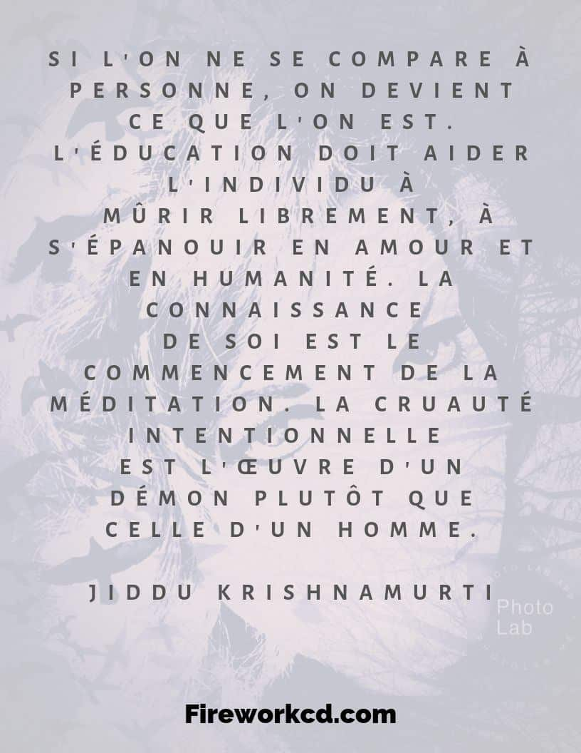 Citation krisnamurti jiddu spirit