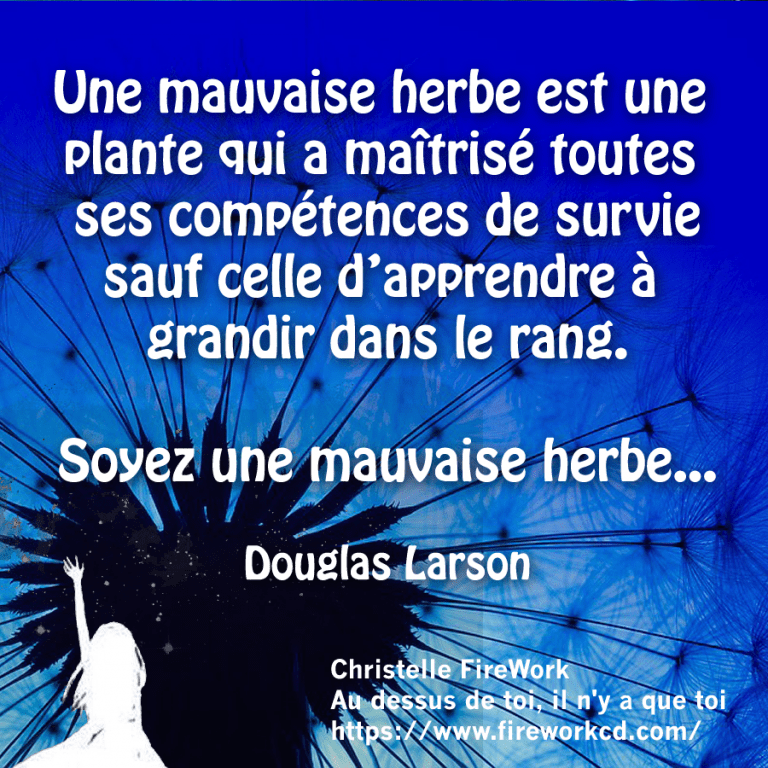 Citation Douglas Larson